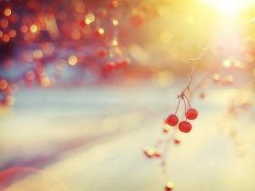 能和你在一起的每一天,就是最美好的一天!